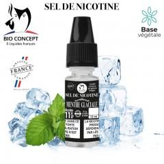 Sel de nicotine - Menthe...